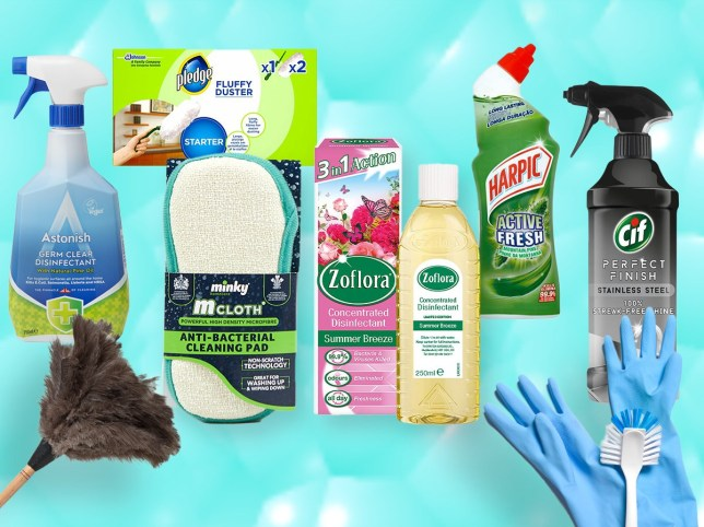 Mrs Hinch shares huge shopping list to get homes clean in 2021