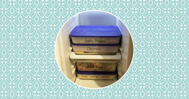 Containers in freezer