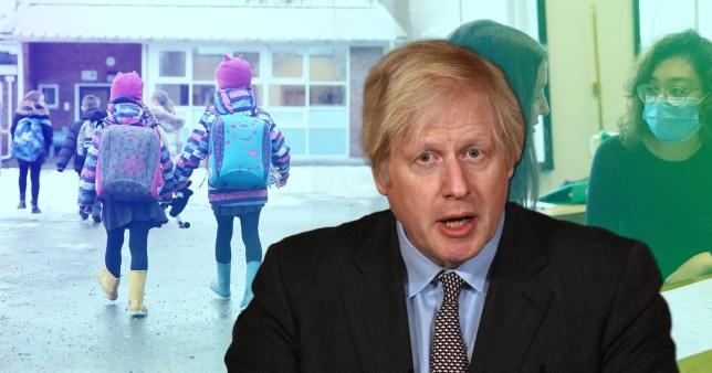 Boris schools