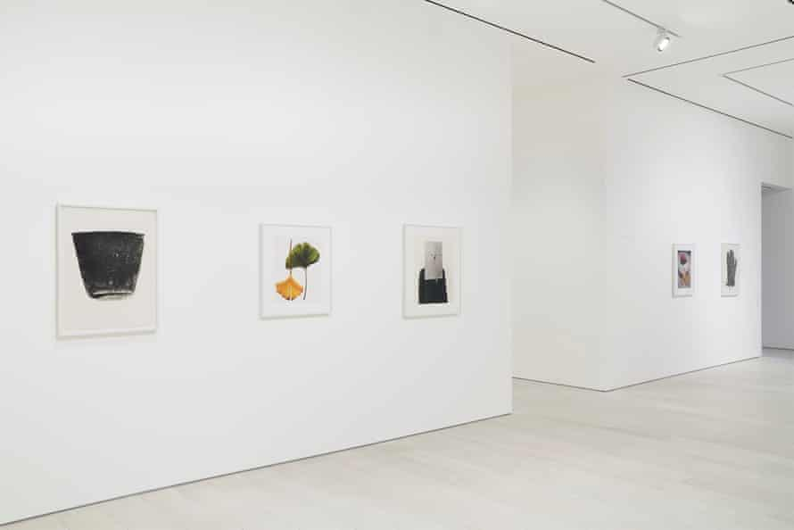 Installation view of Irving Penn: Photographism