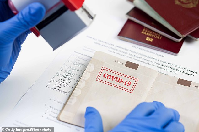 A number of governments, including those of the UK, the US, Germany and Italy have suggested using immunity passports as a way to return to some level of normality following the pandemic (stock image)