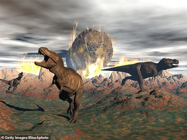 It was 66 million years ago that a city-sized space rock smashed into the Gulf of Mexico killing off the biggest and most successful land animals that ever lived - the dinosaurs (stock image)