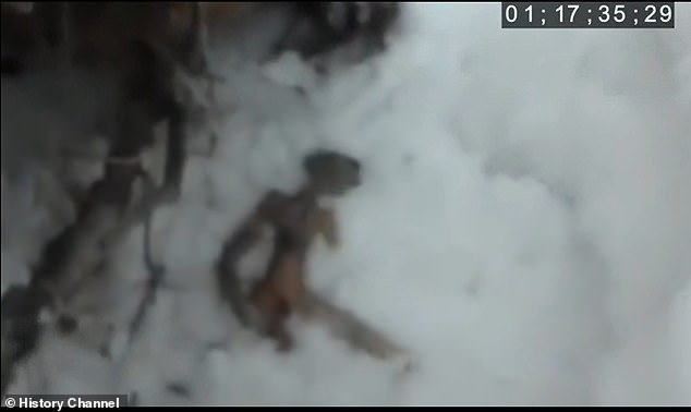 Another investigation highlights what some say was an encounter of the third kind. In Siberia, a man walking his dog stumbled across a ¿strange three-foot creature lying in the snow