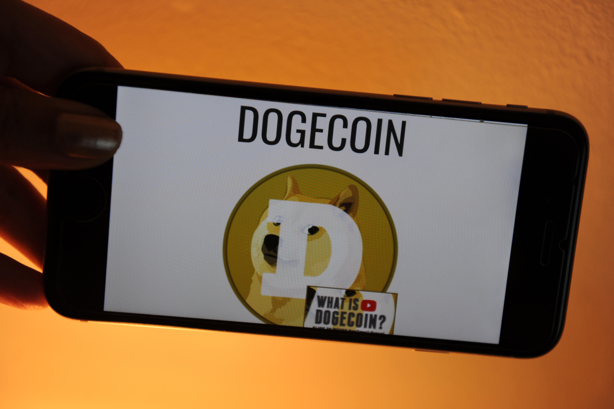 What is Dogecoin and why is it going down? - NEWSCABAL