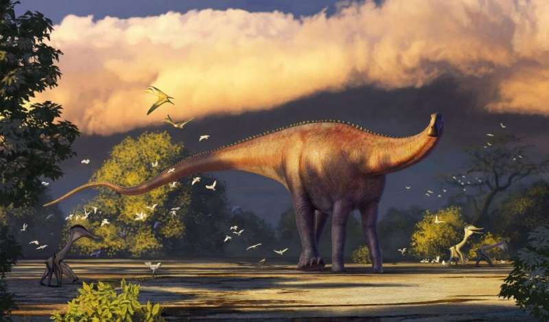 First rebbachisaurid dinosaur remains found in Asia