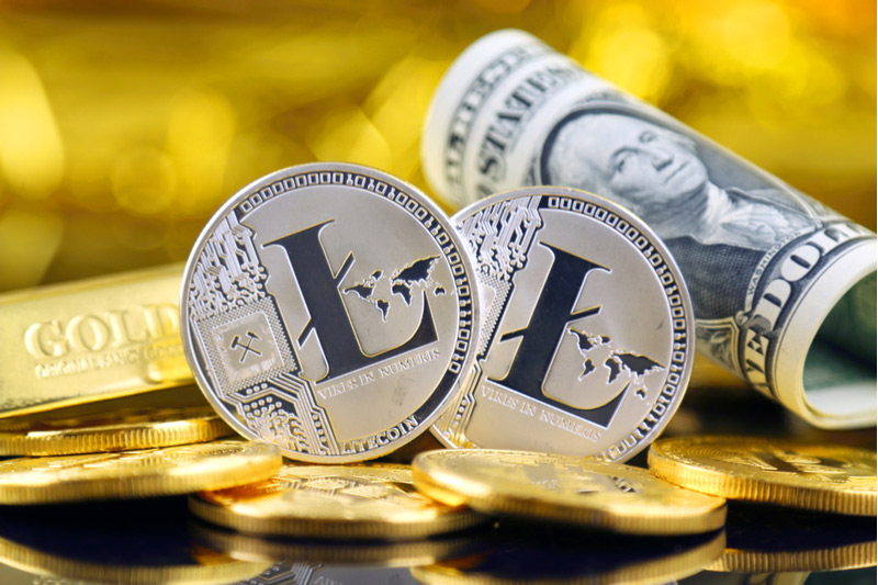 Litecoin Falls 10.16% In Selloff