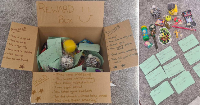 Reward box
