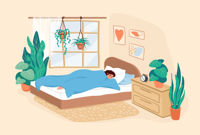Sleeping woman. Cartoon adult girl resting in bedroom during the day, scene of human daily routine, female lifestyle in modern interior for posters. Vector flat illustration in pastel colors
