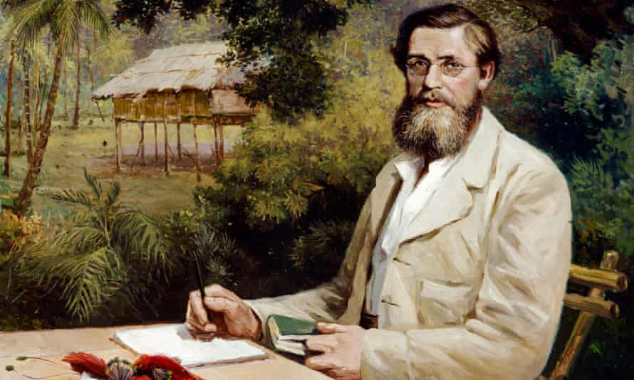 A portrait of Alfred Russel Wallace, whose paper on the theory of evolution was presented in Burlington House in 1858.