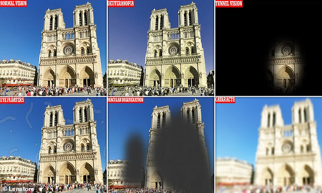 An interactive tool is using 360-degree images to show how iconic tourist spots look to those with eye conditions including cataracts, glaucoma and tunnel vision. Pictured, a view of Notre-Dame de Paris under both normal vision and six different optical conditions