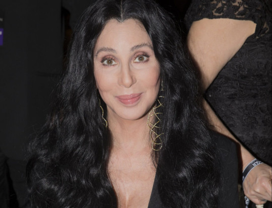 Cher attends the 5th Annual amfAR Inspiration Gala at the home of Dinho Diniz on April 10, 2015 in Sao Paulo, Brazil.