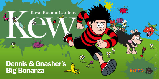 Dennis the Menace turns 70 this year. To celebrate, Kew Gardens in West London are holding a series of fun ?Dennis and Gnasher Big Bonanza? events, including a giant, 3D comic strip with characters from the Beano comic. From 31 March - 18 April; children from ?5, adults ?15, kew.org https://www.kew.org/kew-gardens/whats-on/dennis-and-gnashers-big-bonanza-at-kew