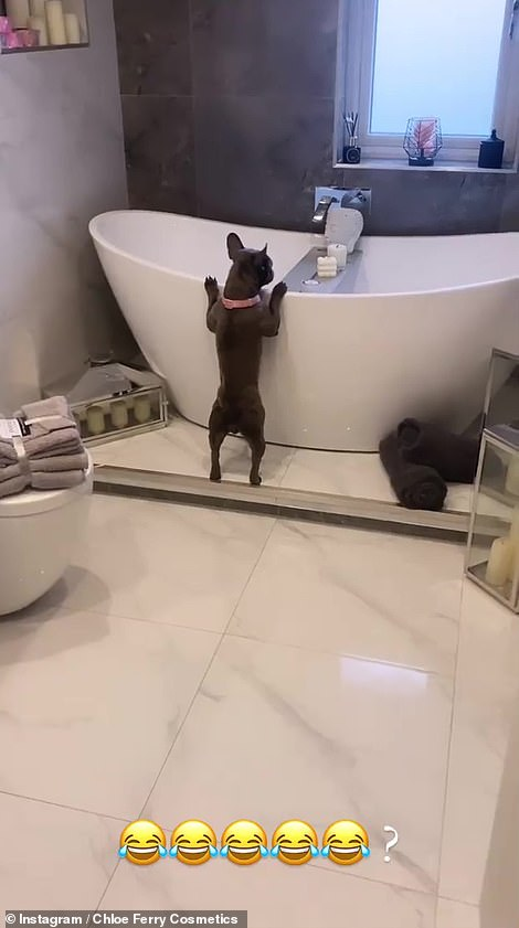 Delighted: Her excited pet dog seemed to love the place so much that he prepared to jump into a tub