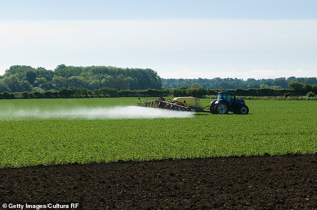 Asia had the most land at risk—1.9 million square miles—with China accounting for more than half—while elevated contamination levels in Russia, Ukraine and Spain meant over 60 percent of European farmland was at high risk of pesticide pollution.