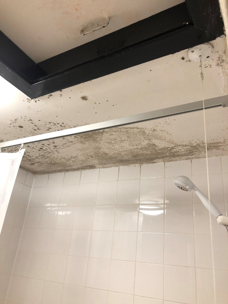 shower with mould on ceiling