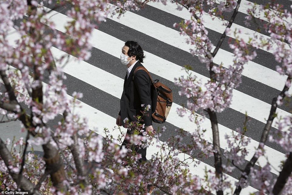Cherry trees do exist, and bloom, in other countries across the world, but the flowers hold special cultural and historical significance in Japan