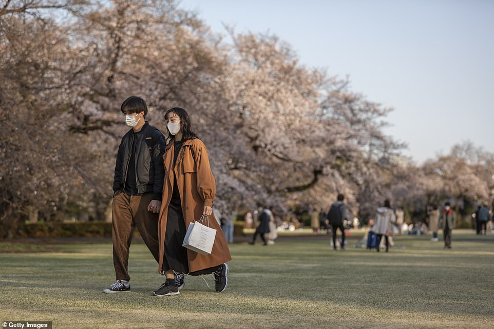 Tokyo residents walk through one of the city's parks where the cherry trees are in full bloom. The peak bloom was declared after the Japan Meteorological Corporation spotted five blooms on its sample tree in Tokyo