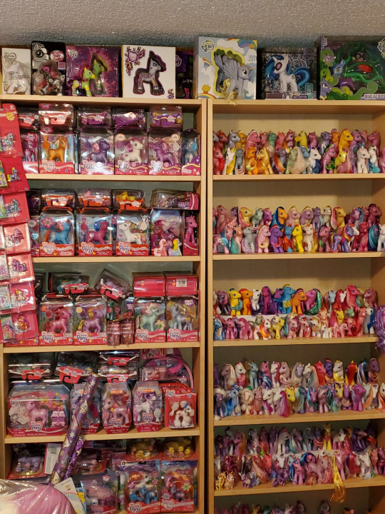 My Little Pony super fan Stephanie Nasello has in her collection 4,500 toy horses worth an estimated $80,000 (?58,000)