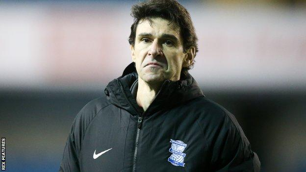 Birmingham head coach Aitor Karanka on the sidelines