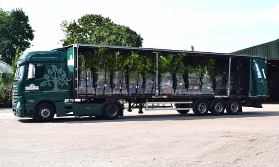 Plants can take up to 48 hours longer to arrive from the continent since Brexit.