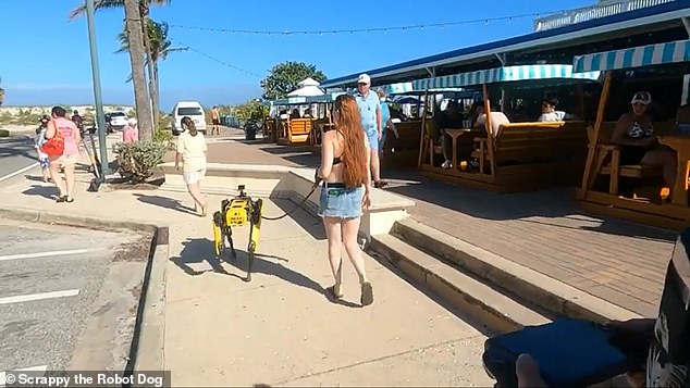 Boston Dynamics' robot dog, Spot, has been seen in hospitals, at crime scenes and space rocket testing facilities, but the latest sighting occurred as it strolled down a Florida beach while attached to a leash