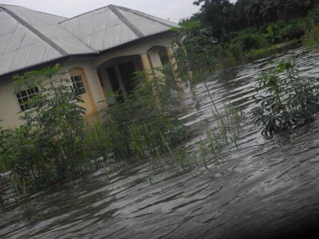 Flood, Edo
