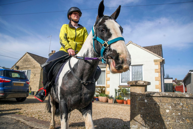 micky the rescue pony delivering books