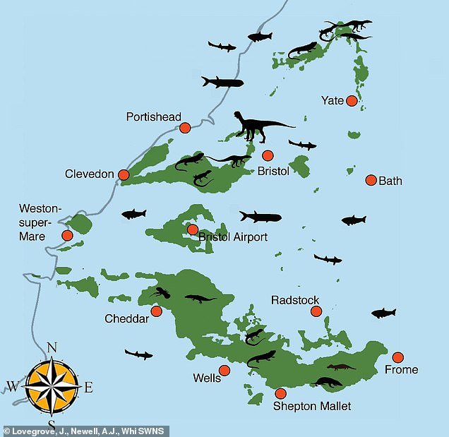 Map of the Triassic palaeo-islands of the Bristol area. Includes silhouettes of the animals that lived on the islands and swam in the sea surrounding them