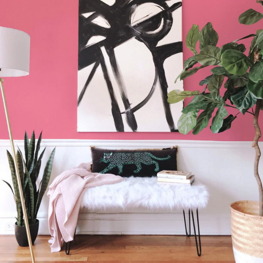 a living room with a pink wall