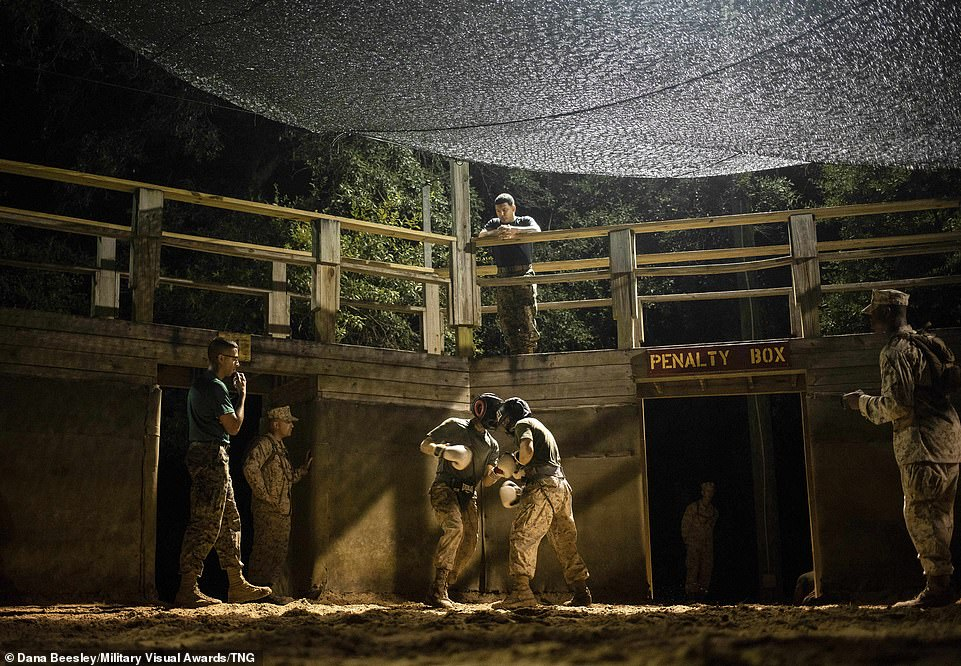 Drill Instructors and staff with Mike Company, 3rd Recruit Training Battalion, watch and observe as their recruits battle each other during nighttime Crucible boxing bouts on Marine Corps Recruit Depot Parris Island, South Carolina, on October 8, 2020