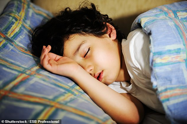 Scientists studied more than 10,000 MRI brain scans of children aged nine and ten. It revealed youngsters who snore have a thinner layer of grey matter at around the frontal lobe of the brain, a region which controls impulse control and reasoning (stock)