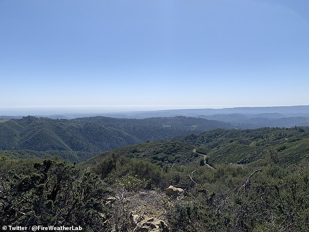 Craig Clements, a San Jose State University (SJSU) professor and director of the wildfire center ventured up Mount Umunhum (pictured) in the South Bay to witness the green shrubs and lush trees that typically cover the mountain top, but only dry, dead timber was seen