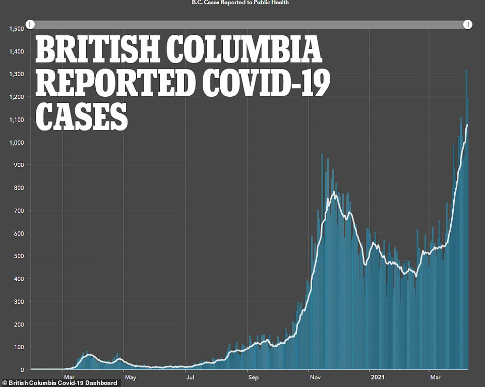 Rising: This graphic reveals the rising number of COVID cases in British Columbia in Canada - since March almost 900 cases of the more infectious and deadly Brazilian P.1 variant have been reported in the province
