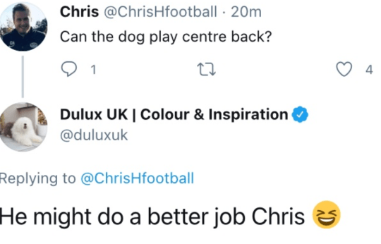 Could the Dulux dog do a better job than Tottenham's current defenders