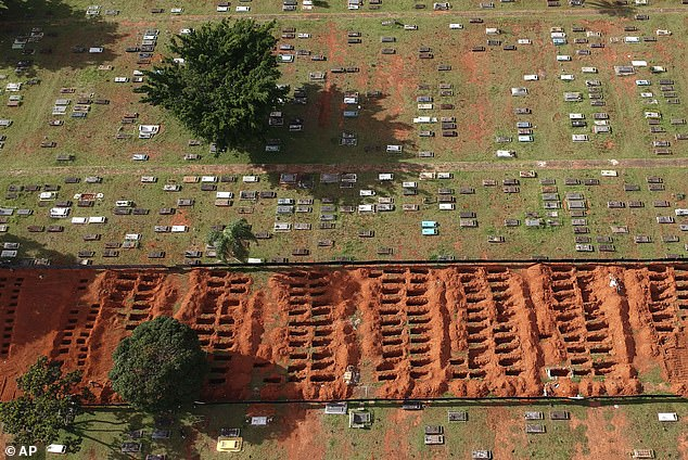 It is not clear why more young people are falling seriously ill during the current wave of the virus in Brazil, but some scientists think the new P1 variant could be at least partly to blame (pictured, freshly dug graves at a cemetery in Brasilia, Brazil)