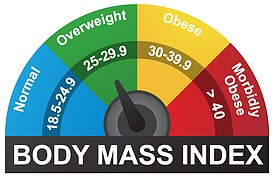 Pictured: the Body Mass Index