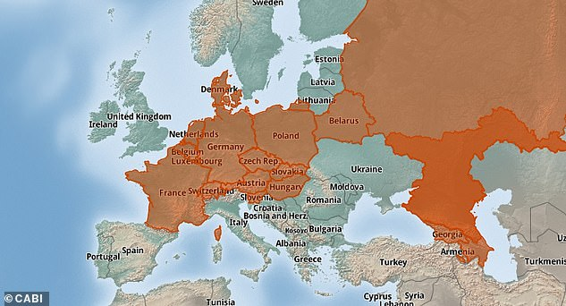 This map from the Invasive Species Compendium shows the current European range of the raccoon (Procyon lotor) which spreads across 20 countries