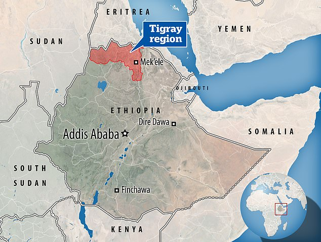 The Eritreans have been helping Ethiopia's central government fight the region's former ruling party, the Tigray People's Liberation Front (TPLF), in the conflict plaguing the Horn of Africa nation