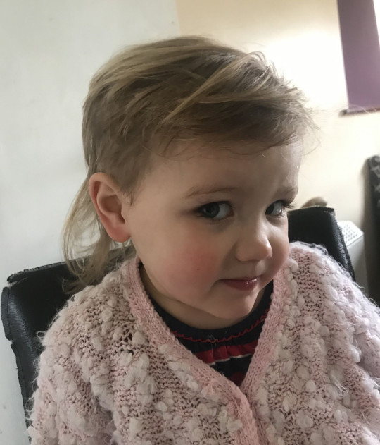 a Toddler who wanted to look like a princess and gave herself a mullet