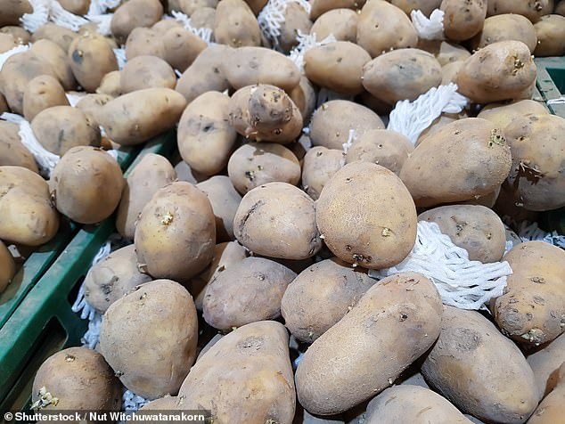 The Russet Burbank (pictured) is a potato variety grown in North America which is widely used to make French fries, and is believed to be the spud of choice for McDonald's