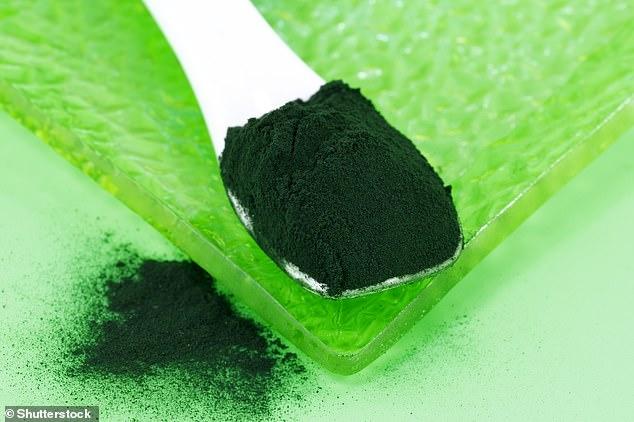 Powder made from spirulina, aa biomass of a species of cyanobacteria (Arthrospira platensis)