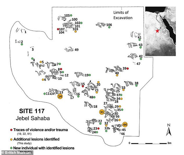 The graveyard, illustrated showing the position in which the skeletons were found, is one of the earliest formal cemeteries in the world. The red dots show the individuals previously found to have traumatic lesions or signs of violence, the orange dots those with newly-identified lesions as well as those already discovered, and the green dots those newly-identified as having traumatic lesions or signs of violence