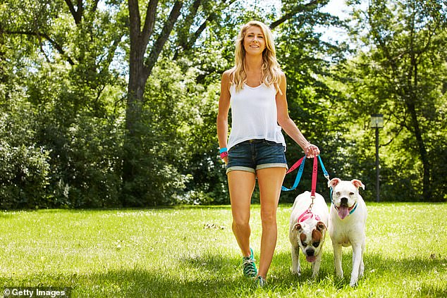 A brisk daily walk is a wonderful way to develop or maintain cardiovascular fitness