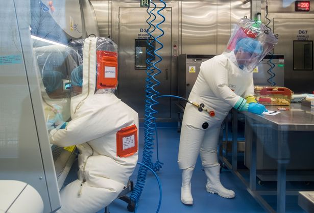 The Chinese biosafety laboratory accused by top US officials of being at the origin of the coronavirus pandemic