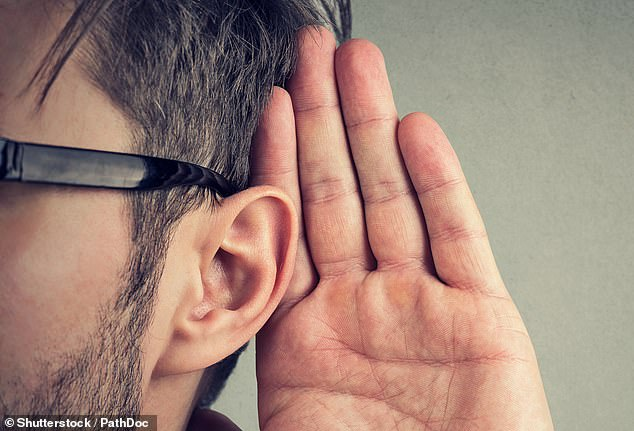 Most noise-induced hearing loss (NIHL) is caused by damage to, and the death of, hair cells in the inner ear