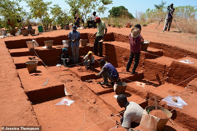 An analysis of settlements (pictured) and paleoenvironmental data along the northern shores of East Africa's Lake Malawi reveals ancient inhabitants used fire 92,000 years ago to prevent forest regrowth