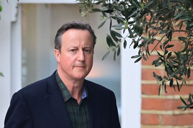 David Cameron sent dozens of cosy messages to officials and ministers