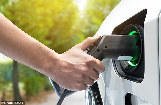 Long-lasting, quick-charging batteries are essential to the expansion of the electric vehicle market (stock image)