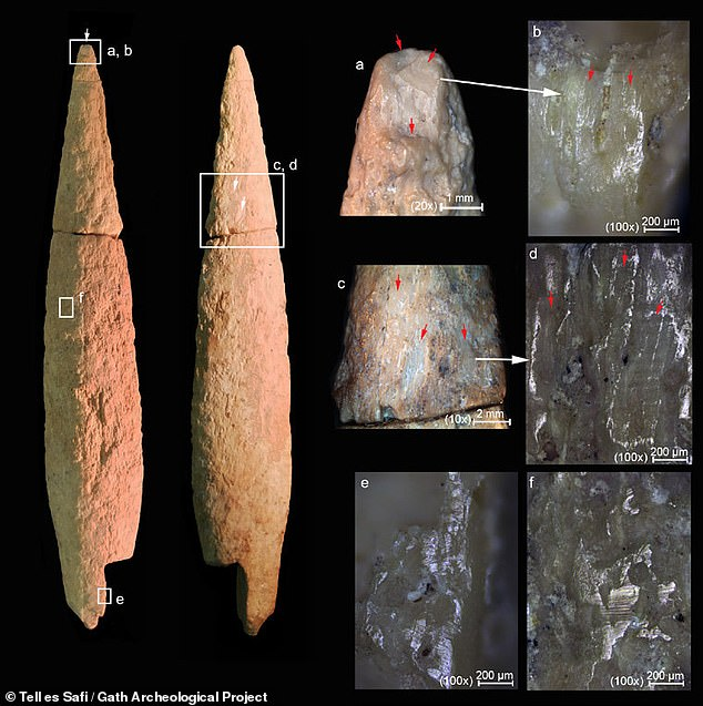 The arrowhead suffered impact fractures (a), which can be further seen in high magnification (b) detailing the direction of which the arrowhead made its mark. There were also chiseling marks (c, d) on the body of the arrowhead, which give more detail on how it was produced