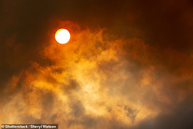 'While most studies have assumed less fire took place in the preindustrial era, the ice cores suggested a much fierier past, at least in the Southern Hemisphere,' said paper author and atmospheric chemist Loretta Mickley, also of Harvard University